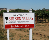 Welcome to Suisun Valley